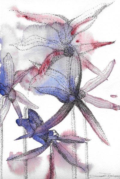 Fleurs étoilées